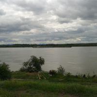 Reni..Danube, Рени
