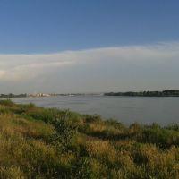 Danube, Рени