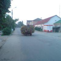Калинина, Саврань