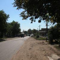 Tarutyne 2006, Тарутино