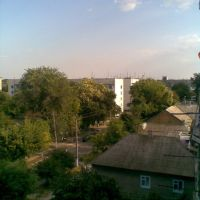 5 etaj u Bujorov, Татарбунары