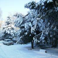 Зима 3, Татарбунары