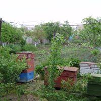 огород Энгельса,30, Татарбунары