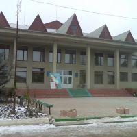 Фрунзівський Будинок Культури, Фрунзовка