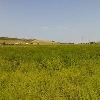 Околиці Фрунзівки, Фрунзовка