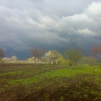 вид на кирпичный завод, Ширяево