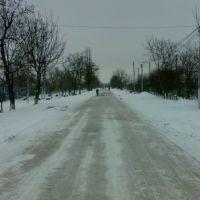 зима...ленина, Ширяево