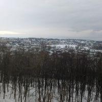 Вид на В.Багачку, Великая Багачка