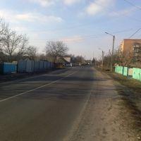 Улица Октябрьская, Великая Багачка