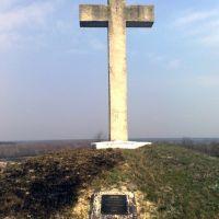 Хрест на могилі жертв голодомору 1932-1933 років, Великая Багачка
