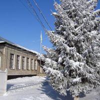 Военкомат 2011, Гадяч