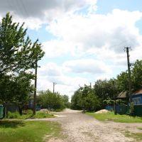 Lesi Ukrainki street, Гребенка