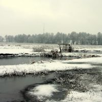 Winter swamp, Гребенка