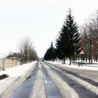 Petrovsky street, Гребенка
