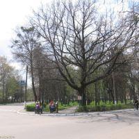 Сквер Гоголя, Диканька