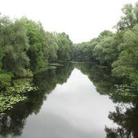 вид с моста, Зеньков