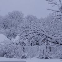 Winter, Зеньков