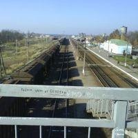 Вокзал Карловки, Карловка