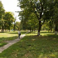 Карлівка, Полтавської області - Центральний Парк, Карловка
