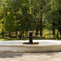 Карлівка, Полтавської області - Фонтан в центральному парку, Карловка