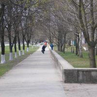 Біля парку Б.Хмельницького, Кобеляки