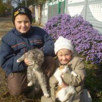 жовтень 2010, Кобеляки