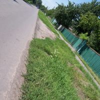 road in kozelshcyna, Козельщина