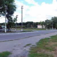 Козельщинська автостанція, Козельщина