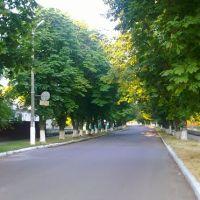 Каштанова дорога, Козельщина