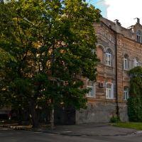 ул. Коцюбинского, 2, Кременчуг