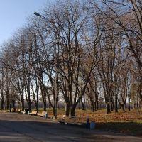 Осений парк, Кременчуг