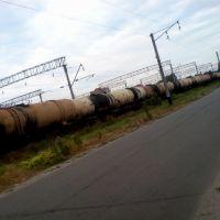 Состав нефти, Лубны