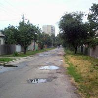 Ul. O. Koshevogo, Лубны