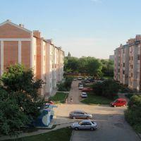Двор, Лубны