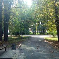 Парк Донченка, Лубны