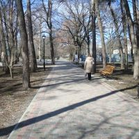 Аллея, Миргород