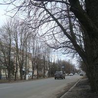 Улица Гоголя, Миргород