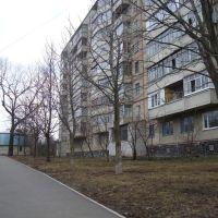 Миргород, Миргород