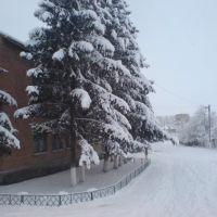 Зимний НВК, Новые Санжары