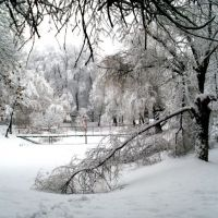 Волшебная зима, Новые Санжары