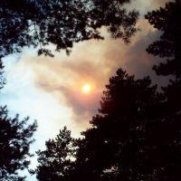 Пожар, Новые Санжары
