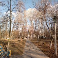 Парк, Новые Санжары