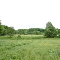 Green nature, Оржица