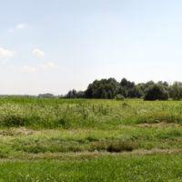 Charming view, Оржица