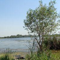 Озеро, Оржица