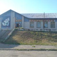 Бар, Оржица