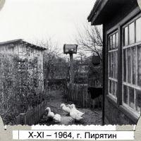 Пирятин, 1964 год, Пирянтин