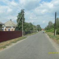 Пирятин  - ул.Кулинича, Пирянтин