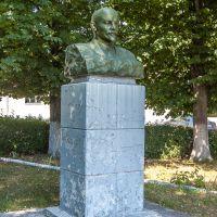 Ленин в Пирятине., Пирятин