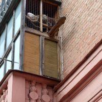 Голубятня на балконе, Полтава